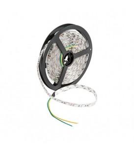 Cata 3 Çipli İç Mekan RGB Şerit LED (5 metre) CT-4545