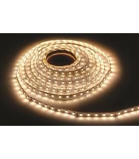 Goldx İç Mekan Şerit LED (5 metre) ZE503