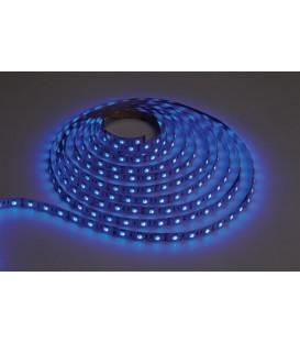 Goldx İç Mekan Şerit LED Mavi (5 metre) ZE503-BLUE
