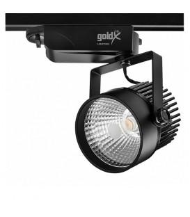 Goldx 25W Ray Spot ZE590-BK