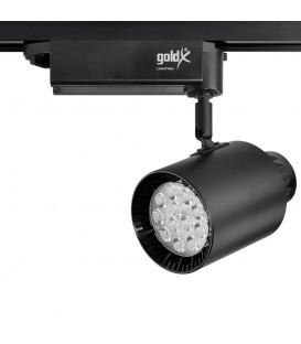 Goldx 30W Ray Spot ZE545